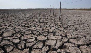 Agroindustria declaró la emergencia agropecuaria