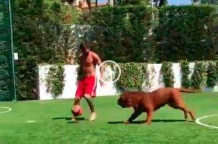 """Video: Messi juega a la pelota y se divierte con su """"enorme"""" perro"""