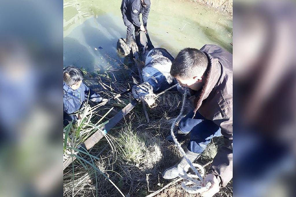 Momentos de extrema tensión y angustia se vivieron durante el rescate.  Dpto Relaciones Policiales de Provincia
