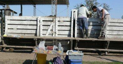 Día de los agrónomos y veterinarios