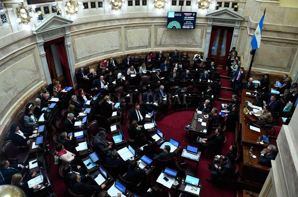 En el Senado de la Nación se debatirá el proyecto de despenalizar el aborto que ya cuenta con media sanción de diputados.  <strong>Foto:</strong> Senado de la Nación