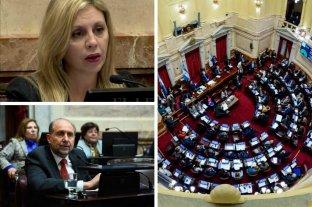 Qué dijeron y cómo votaron los senadores santafesinos sobre la despenalización del aborto