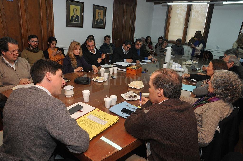 La Comisión de Educación se reunió en cuatro oportunidades con especialistas para analizar la reforma constitucional en la provincia. La próxima semana emitirá un dictamen. <strong>Foto:</strong> Luis Cetraro