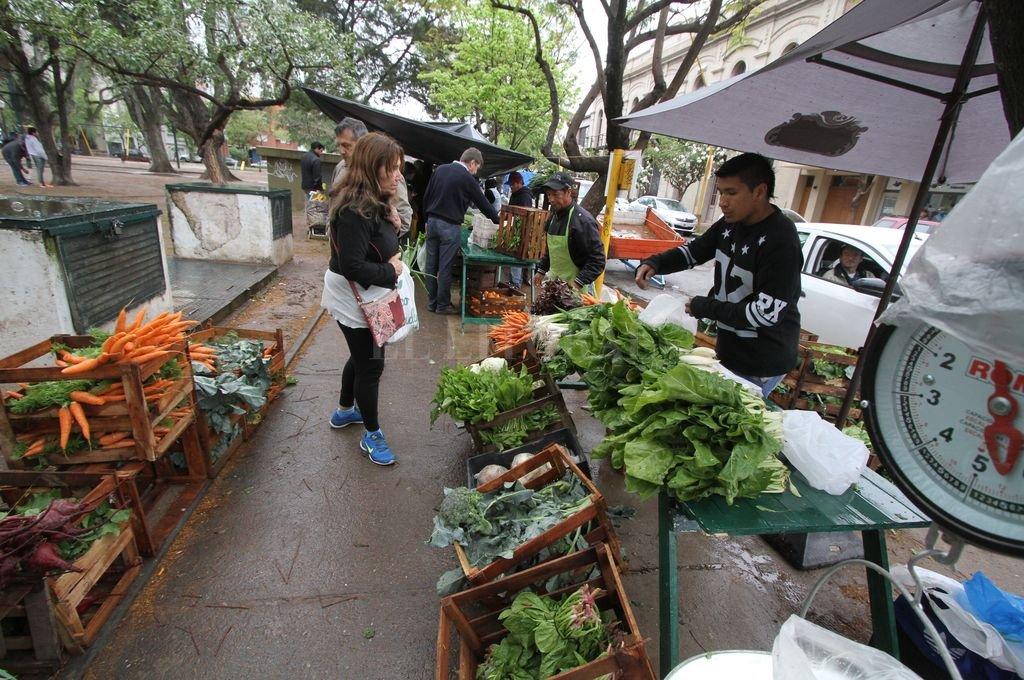 Una alternativa. En Santa Fe hay ferias de verduras y hortalizas saludables, como la que se hace los sábados en la plaza Pueyrredón. <strong>Foto:</strong> Archivo / Guillermo Di Salvatore