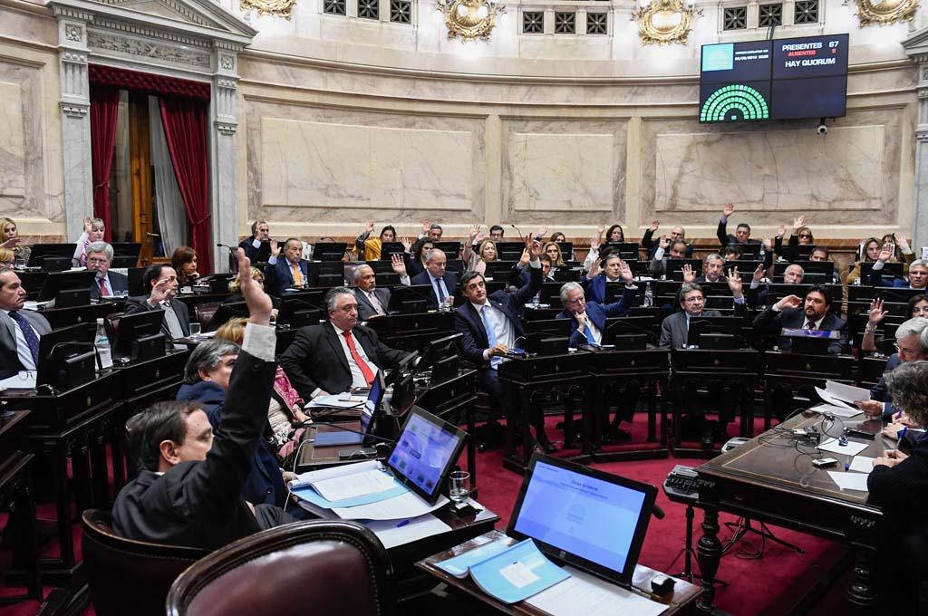<strong>Foto:</strong> Delfina Linares - Senado de la Nación.