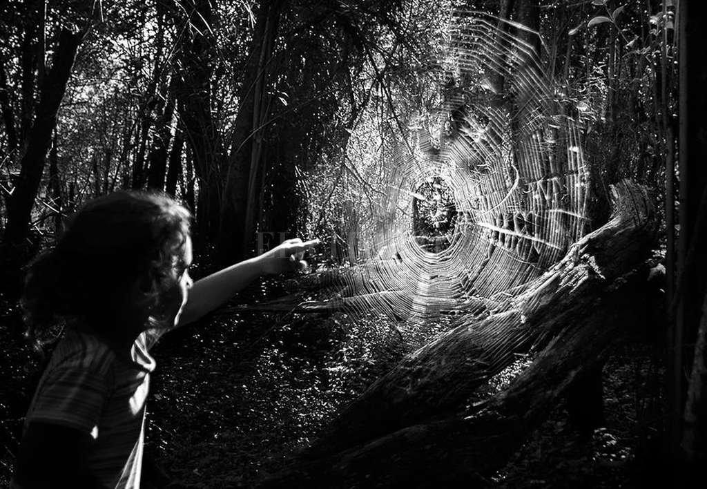 """""""Ana Paula Ocampo sabe encontrar los instantes ínfimos y hacer de ellos universos esenciales y también infinitos"""", describe Patricia Severín. <strong>Foto:</strong> Gentileza producción"""