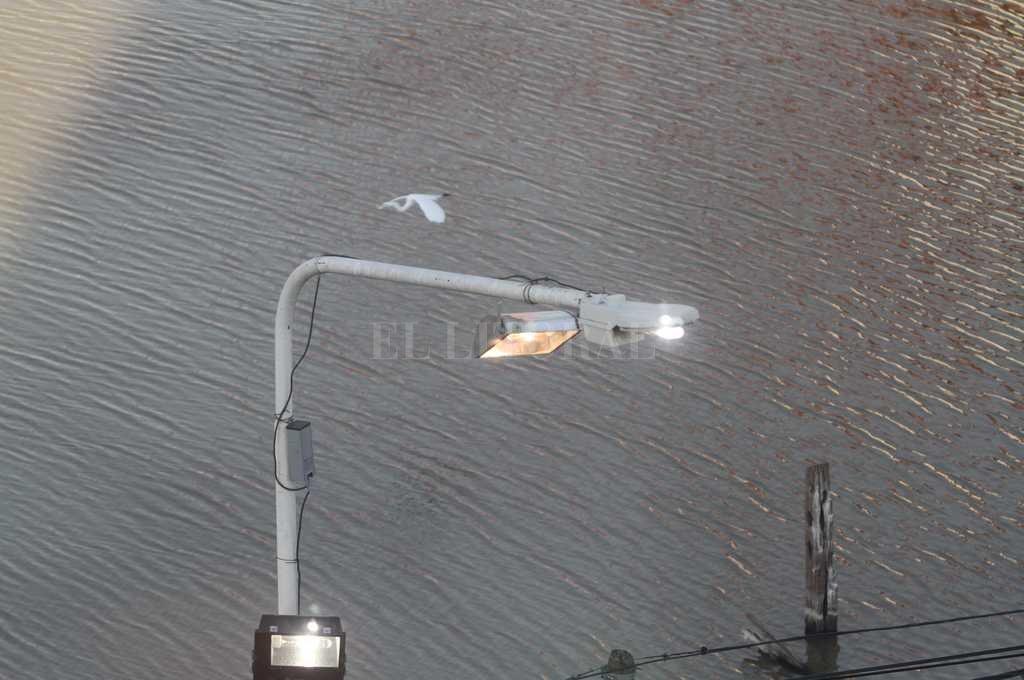 Las luces del puerto permanecieron prendidas durante el día.  Crédito: Mauricio Garín