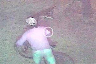 Video: así roban una bicicleta de un edificio del sur de la ciudad