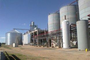 Azucareros seguirán produciendo bioetanol