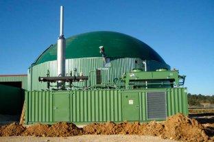 En octubre comienza la construcción la planta de biogás en Venado Tuerto