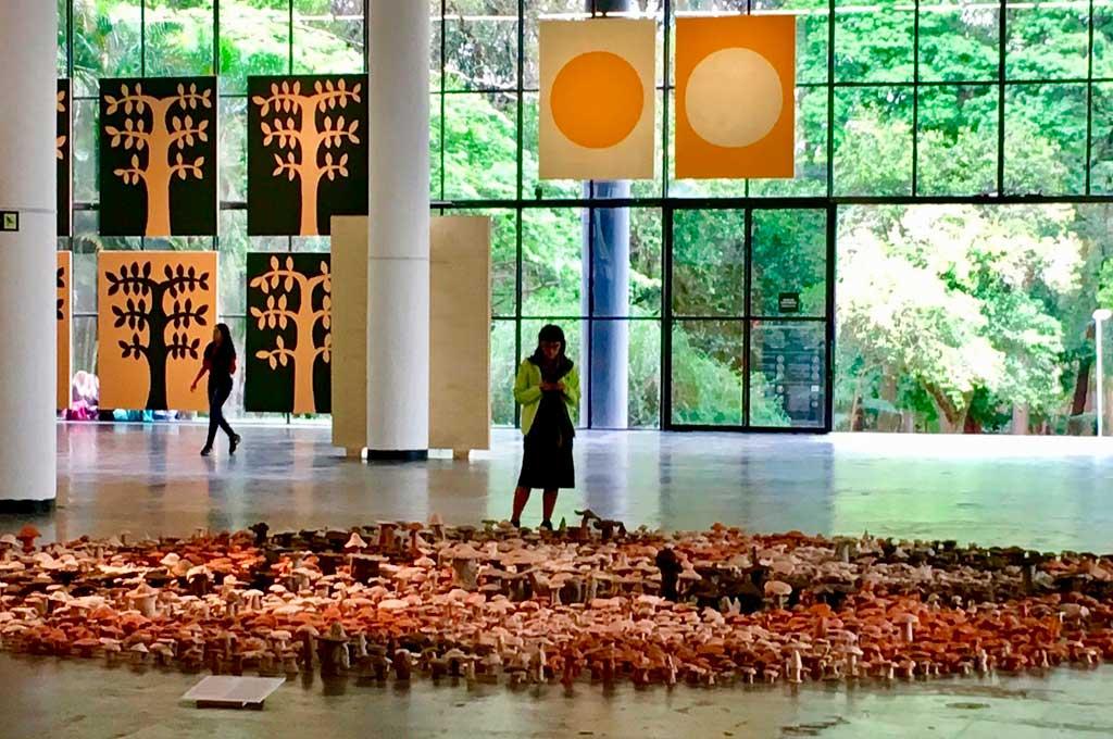 Anticipo: 33° Bienal de São Paulo