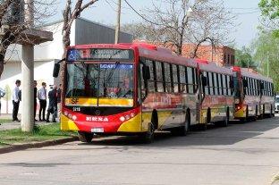 La Línea 3 se sumó a la renovación de los colectivos de la ciudad -  -