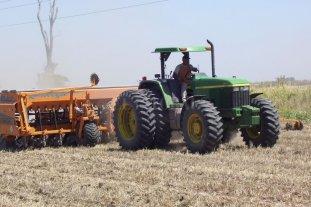 Las lluvias en Santa Fe dejaron grandes interrogantes en la cosecha de trigo y la siembra de soja -  -
