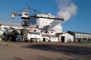 Postergan inicio de la zafra en Las Toscas a causa del clima