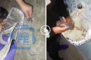 Videos: intentan ingresar un celular y drogas en las cárceles de Piñero y de Coronda -  -