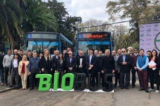 Exitosa prueba piloto de utilización de biodiésel 100% en colectivos de Rosario -  -