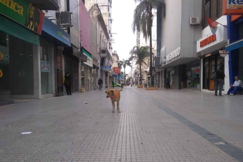 Paro general: la medida de fuerza se hace sentir en la ciudad - La peatonal San Martín, casi vacía. -