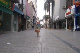 Paro general: la medida de fuerza se hace sentir en la ciudad - La peatonal San Martín, casi vacía.