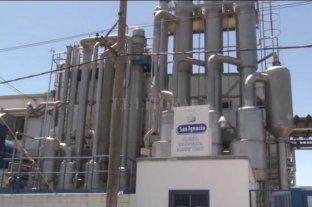 San Ignacio invierte $ 30 millones para producir más queso untable