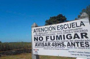 Fumigaciones: ambientalistas critican al gobierno por apelar el fallo judicial
