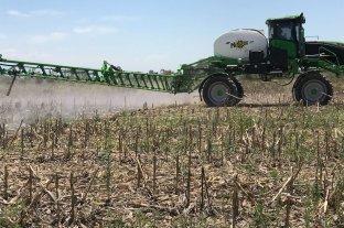 Rafaela: fracasa ordenanza para limitar el uso de agroquímicos