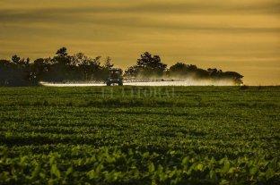 En busca de estadísticas oficiales sobre agroquímicos