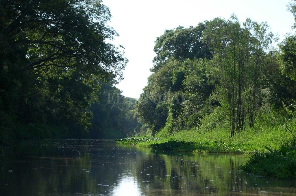Toda la belleza del sitio Ramsar Jaaukanigás, en el noreste provincial. <strong>Foto:</strong> Archivo/F. González Brizio