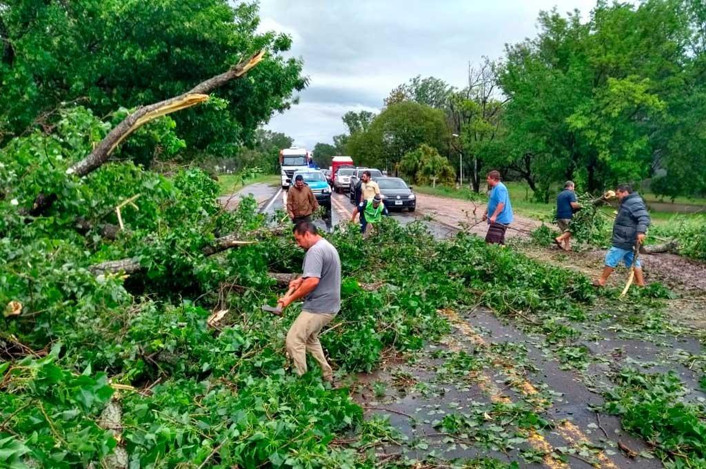 Este domingo los vecinos de la localidad de Sauce Montrull debieron retirar un árbol caído que bloqueaba los caminos Crédito: Mauricio Garín