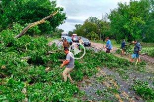 Video: tremenda tormenta en las afueras de Paraná - Este domingo los vecinos de la localidad de Sauce Montrull debieron retirar un árbol caído que bloqueaba los caminos -