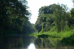 Turismo rural: regiones santafesinas suman opciones para atraer visitantes