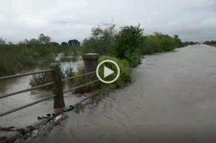 El desborde del Canal San Ignacio sigue inundando campos en Laguna Paiva -  -