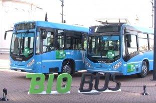La provincia de Santa Fe propone que todo el transporte público utilice biodiesel