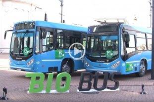 La provincia de Santa Fe propone que todo el transporte público utilice biodiesel -  -