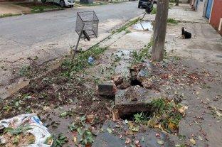 Sacaron un árbol, se hizo un socavón y teme por la estructura de su casa