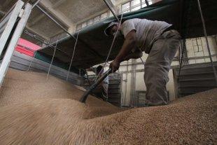El trigo le sacudió el polvo al puerto de Santa Fe