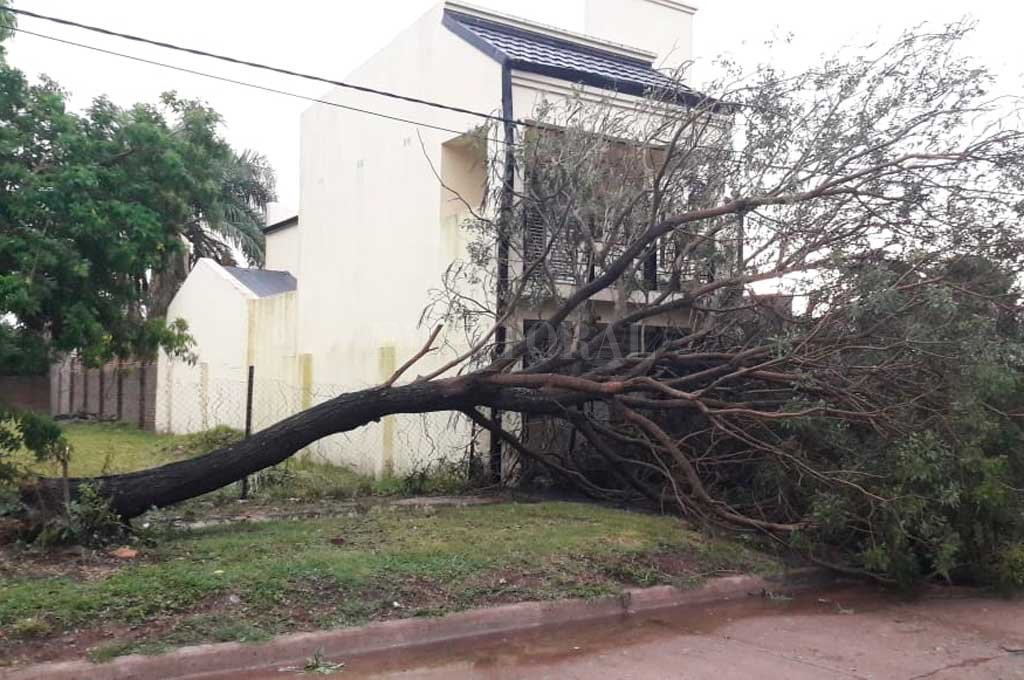 Fuerte tormenta afectó a San Javier