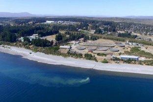 Alarmante contaminación por residuos cloacales en el lago Nahuel Huapi