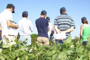 Cae índice de confianza de empresarios agropecuarios