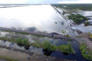 Algodón: confirman más de 7.000 hectáreas perdidas por las inundaciones