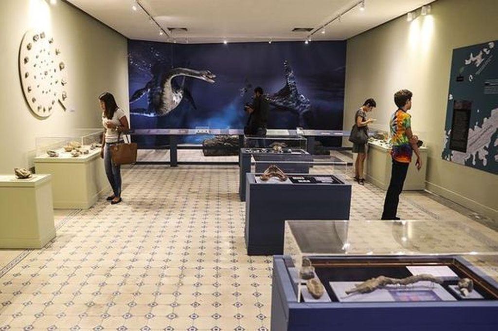 El Museo Nacional de Brasil organiza su primera exposición tras el incendio