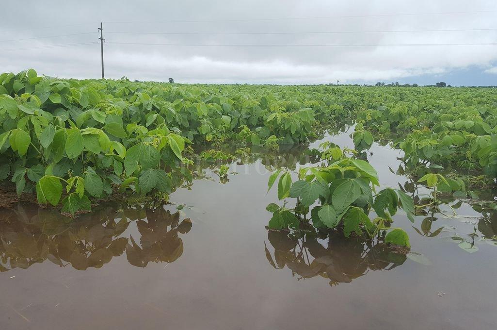 Inundaciones: miles de millones de dólares en pérdidas