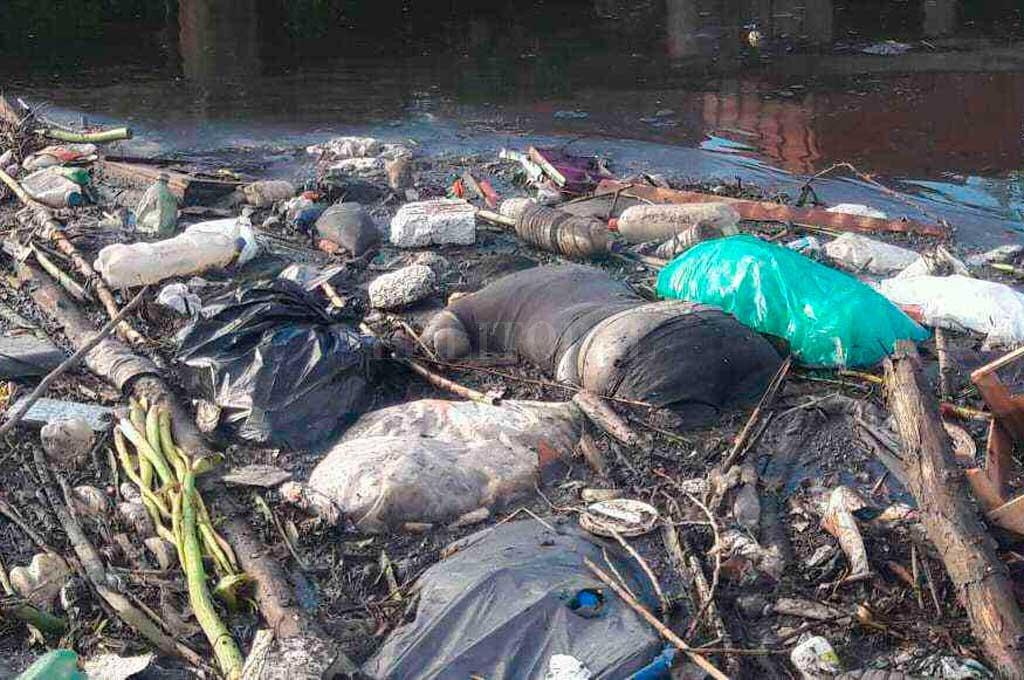 018b6f39f Encontraron un cuerpo e investigan si es Carla Soggiu     El Litoral -  Noticias - Santa Fe - Argentina - ellitoral.com