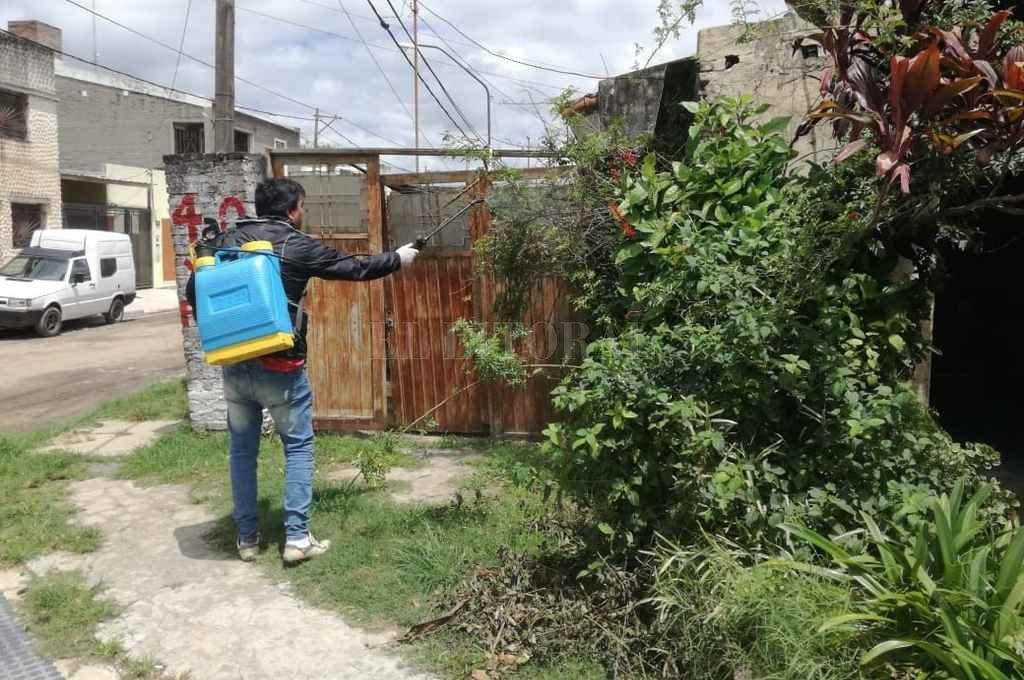 Estudian tres posibles casos más de  dengue en el suroeste de la ciudad - Apenas se detectó el primer caso, se instrumentó un operativo de bloqueo en el barrio. -