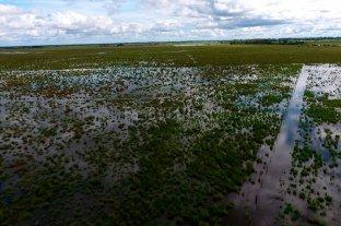 La Nación declaró la  emergencia hídrica - El secretario de Gobierno de Agroindustria, Luis Miguel Etchevehere, anunció que recorrerá este viernes las zonas afectadas. -