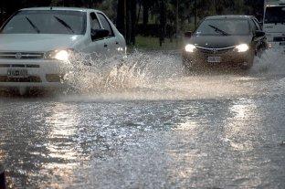 Renuevan alerta por lluvias intensas y tormentas fuertes -  -