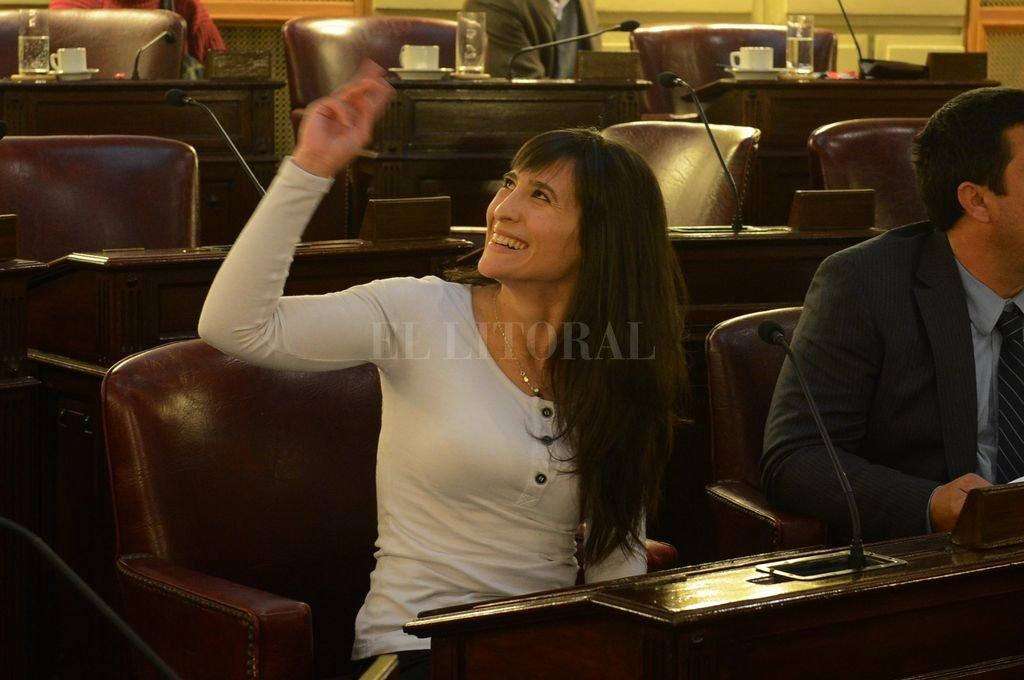 Robustelli juró como diputada rodedada de bancas vacías y con gradas llenas de militantes del Movimiento Evita. El caso podría aplicarse ahora. <strong>Foto:</strong> El Litoral