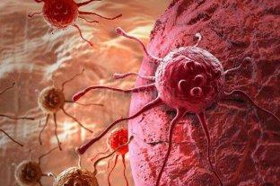 Afirman que el 95% de los tumores cancerígenos podrían curarse