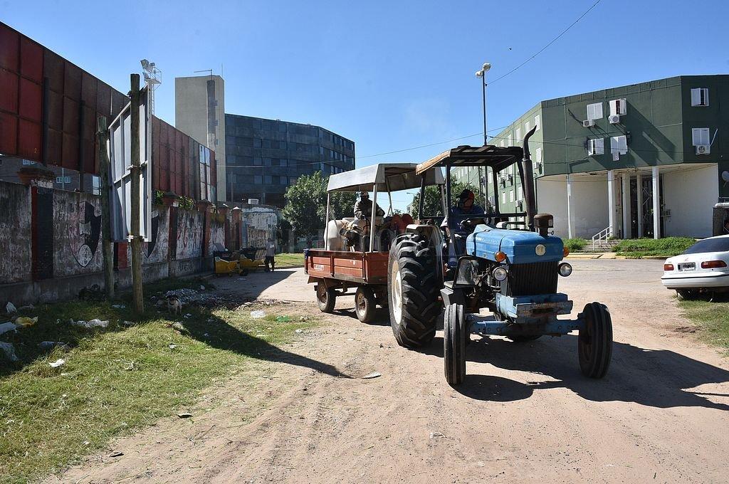 Se realizan tareas de fumigación en barrios de la ciudad de Santa Fe. <strong>Foto:</strong> Flavio Raina