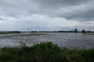 Productores solicitan medidas urgentes para evacuar el agua de los campos