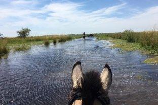 El agua que no se va: ganaderos preocupados por el invierno que se acerca